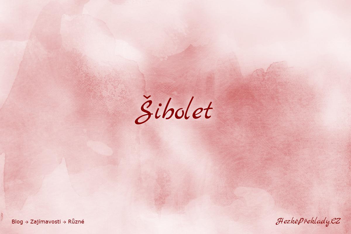 Šibolet